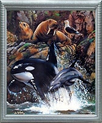 Sea Life Whale Dolphin Animal Collage Ocean Wall Decor Silver Framed Art Picture