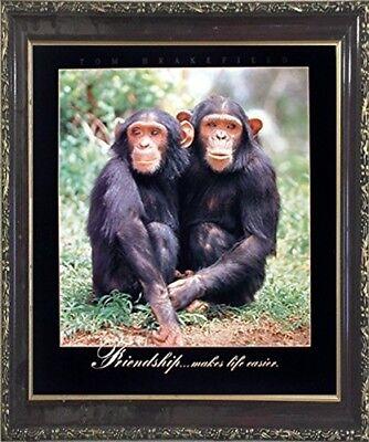 Ingenious Funny Chimpanzee Friendship Wild Animal Wall Decor Art Copy Framed Picture