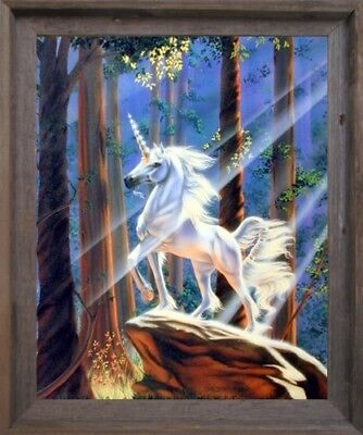 Light in the Forest Sue Dawe Unicorn Horse Barnwood Wall Decor Framed Picture - Unicorn In Forest