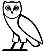 Owl Car Decal