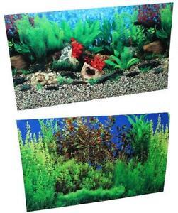 Aquarium Background Ebay