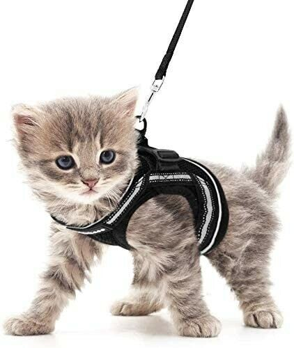 Cat Harness and Leash Set for Walking Escape Proof, Adjustable Soft Kittens Vest