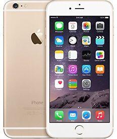 apple iphone 6 plus white & gold