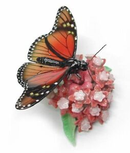 R167-Northern-Rose-Miniature-Monarch-Butterfly-on-a-flower
