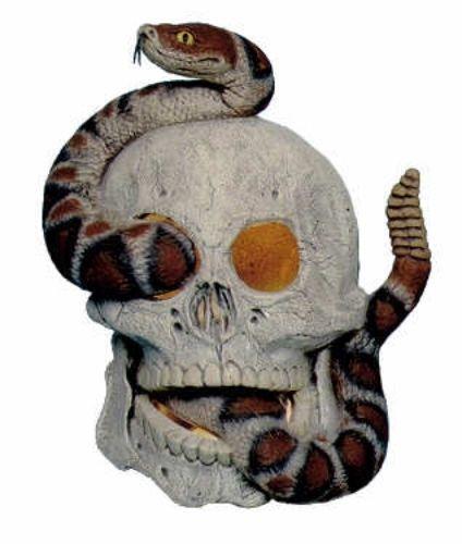Ceramic Skull Ebay
