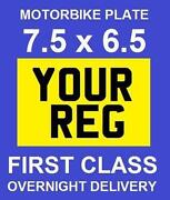 Motorcycle Show Plates
