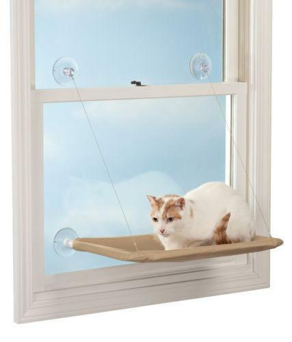 Cat Window Shelf | Wayfair