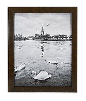 State Art Glass Frame (Golden State Art, Expresso Color Photo Wood Collage Frame with REAL)
