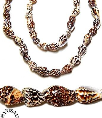 7 Strands Tiger (SHELL BEADS TIGER NASSA SMALL 7-12mm NATURAL BROWN WHITE BEIGE 36 inch)