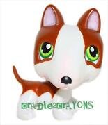 Littlest Pet Shop 154