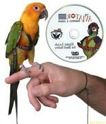 Parrot Leash