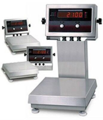 10 X 0.002 Lb Rice Lake Ntep Iq Plus 2100 Digital Bench Scale Led Display New