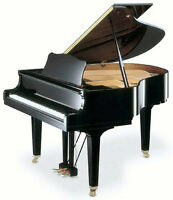 Classical Piano Lessons