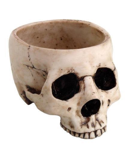 Skull Bowl Ebay