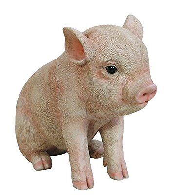 Sitting Baby PIG  - Life Like Figurine Statue Home / Garden NEW