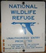 Vintage Fishing Sign