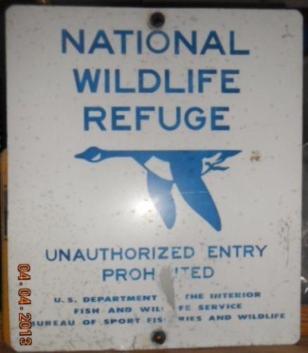 Vintage fishing sign ebay for Vintage fishing signs