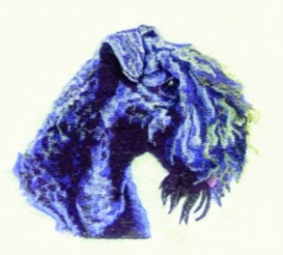 Embroidered Sweatshirt - Kerry Blue Terrier BT3603  Sizes S - XXL