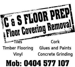 Tile Removal - Diamond grinding - Floor stripping Nundah Brisbane North East Preview