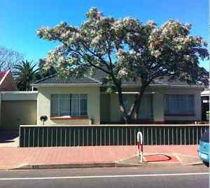 Fully Furnished Room in Brighton $150pw Brighton Holdfast Bay Preview