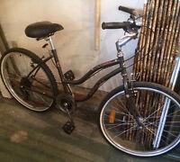 Bicycle – 7 Speed Ladies