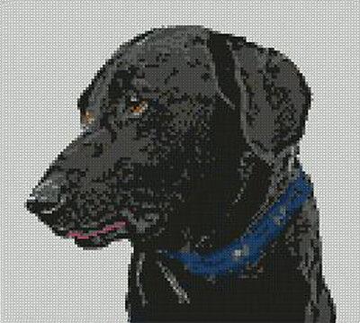 """Black Labrador Counted Cross Stitch Kit 9"""" x 8"""" 23cm x 20.7cm D2142 for sale  Bury St. Edmunds"""