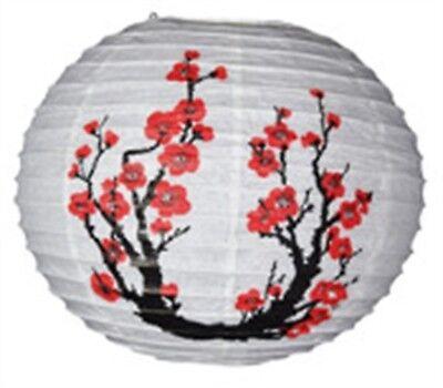 Asian Import Store Distribution 16LAN-JPT 16