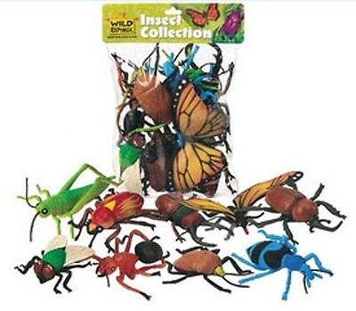 Bug Toys (Wild Republic Insects  Large Bugs Collection)