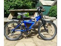 Boys Raleigh 'Megamax' Mountain Bike