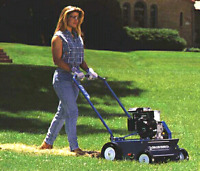 Early spring clean up:Power Rake&Aerate:$99