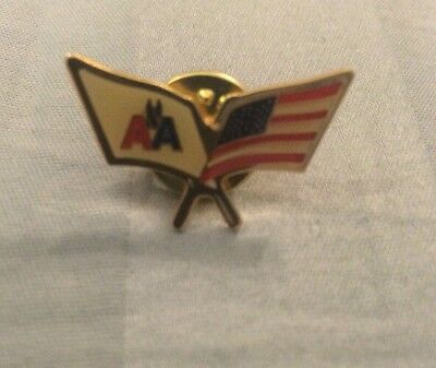 American Airlines Pin