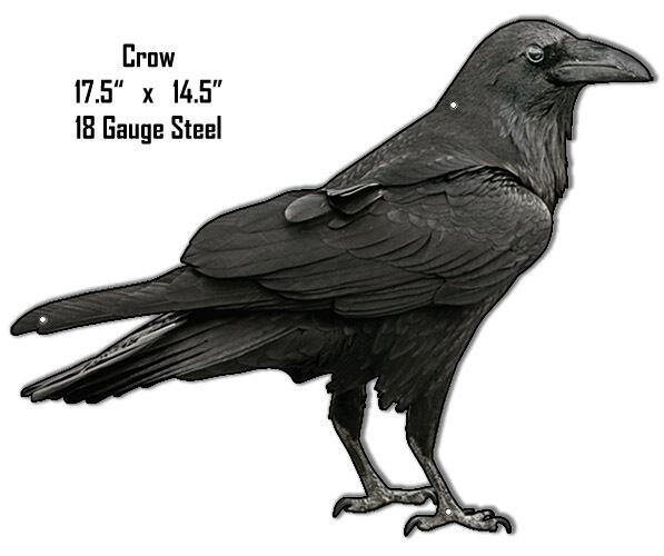 Crow Laser Animal Metal Sign 14.5x 17.5