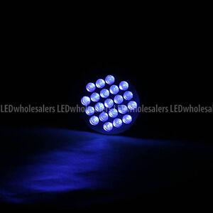 21-UV-Ultra-Violet-395-nm-LED-Blacklight-Scorpion-Hunting-Flashlight-Holster