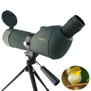 20-60x60 monocular spotting spotter optical bird watching tripod telescope