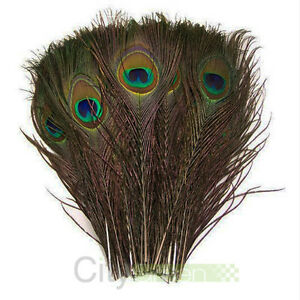 Lots-100PCS-Wholesale-Natural-Real-Peacock-Tail-Eye-Feathers-23-30cm-10-12Inches