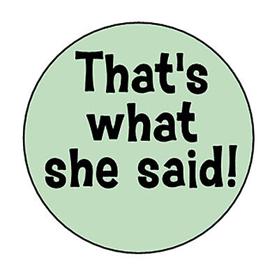 THAT'S WHAT SHE SAID! pin button funny novelty badge