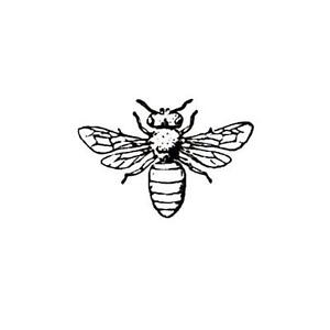 Honey Bee UNMOUNTED rubber stamp, bug, summer, Sweet Grass Stamps #9