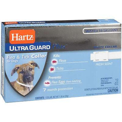 Hartz UltraGuard Plus Flea & Tick Collar for Dogs, White Color + Water Resistant