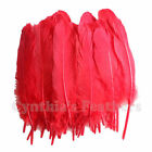 Turkey Red Craft Feathers