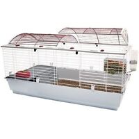 Looking for XL Rabbit cage