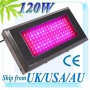 120W LED Grow Lights