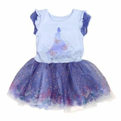 baby blue disney princess dress