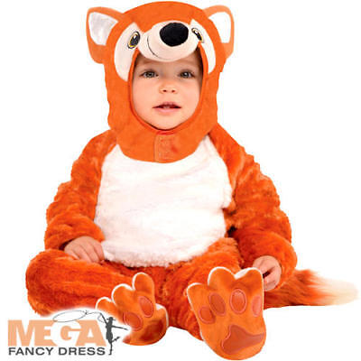 Fantastic Fox Kids Fancy Dress Storybook Animal Boys Girls Toddler Baby Costume - Toddler Boy Fox Kostüm