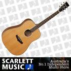 Tanglewood Cedar Body Acoustic Guitars