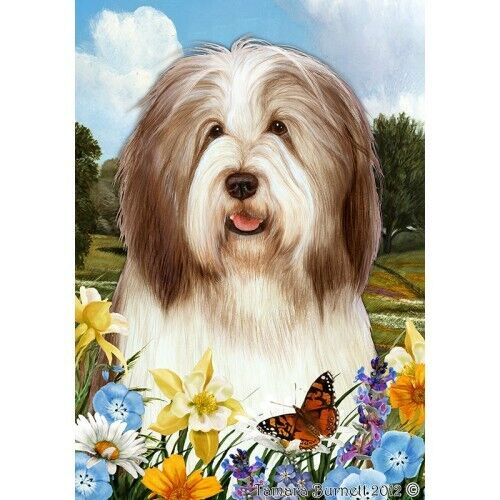 Summer House Flag - Brown and White Bearded Collie 18482