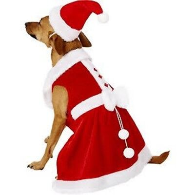 Large Breed Dog Costumes (Rubie's Costume Company Mrs. Claus Dog Costume Dog/Cat  (Small Breed))