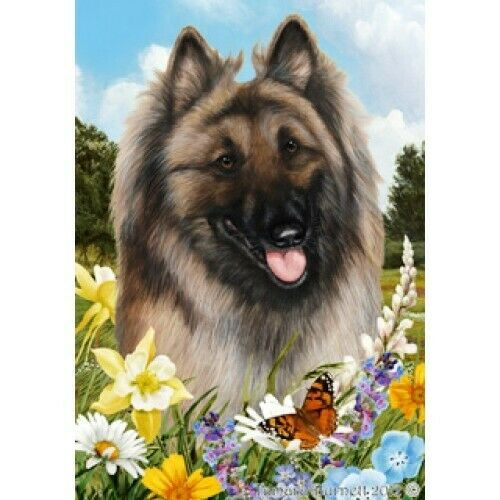 Summer House Flag - Belgian Tervuren 18083