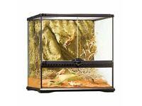 12 x 30cm - 30cm exoterra terrariums