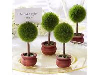 100 x Topiary Tree Place Name Holders - Unique Rustic Favour / Wedding