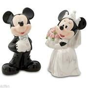 Disney Bride and Groom
